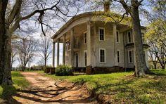 Abandoned plantations | Abandoned Cotton Plantation. Bostwick, Georgia. .... - Destroyed and ...