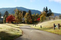 Beautiful autumn colours at Fox's rush #millbrookresort #autumn
