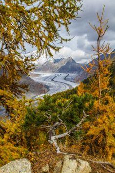 Aletsch Glacier in the Swiss Alps. http://www.schoene-aussichten.travel/region/wallis/