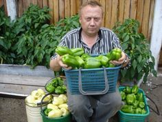 Podivuhodná zahrada Igora Ljadova