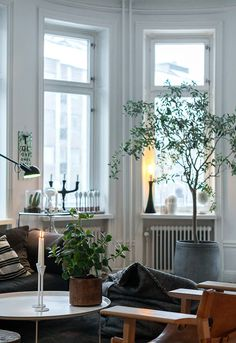 Grönt inne - Lotta Agatons lägenhet