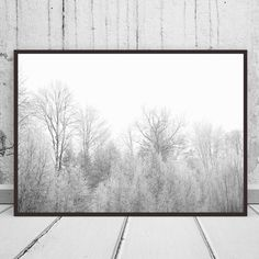 Black and White Snowy Trees Print, Nature Print, Photography, Modern Art, Modern