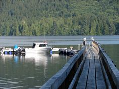 Winter Harbour » Vancouver Island North