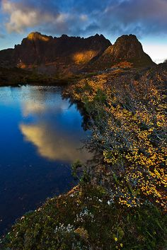 ~~Fagus Season | Cradle Mountain National Park, Tasmania, Australia.by Garth Smith~~ Beautiful Places In The World, Australia Travel, Continents, Places To See, National Parks, Scenery, Island, Explore, North West