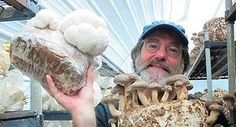 Mycologist Discovered Natural Substitute to #Pesticides  http://crwd.fr/2hbZiOIpic.twitter.com/QSnXO88bNi