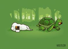 turtle vs rabbit