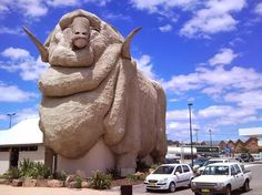 """Merino - Goulburn, New South Wales. Nicknamed """"Rambo"""" by the locals Australia Tourist Attractions, Roadside Attractions, Mountain Club, Big Country, Australia Living, Visit Australia, Sydney Australia, Appalachian Mountains, New Hampshire"""