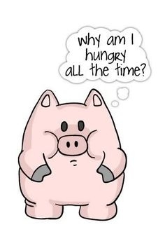 Funny pig screensaver hungry all the time, funny quotes about life, funny dog videos Vintage Funny Quotes, Cute Funny Quotes, Random Quotes, This Little Piggy, Little Pigs, Hungry All The Time, Pig Illustration, Funny Video Clips, Funny Pigs