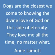 Anne Lamott quote Dogs  God. I love this! I have always said this! Some of the best little creatures on Earth!