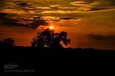 SUNSET IN TEXAS AT 20.30 Hrs by srnair47 #nature #mothernature #travel #traveling #vacation #visiting #trip #holiday #tourism #tourist #photooftheday #amazing #picoftheday