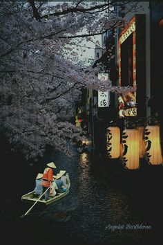 I really want to go to Kyoto, it seems like this whole board is just filled with pictures of Kyoto Aesthetic Japan, Japanese Aesthetic, Nature Aesthetic, Beautiful World, Beautiful Places, Amazing Places, Japon Tokyo, Japan Street, Japanese Landscape