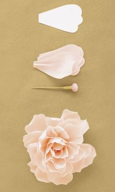 "The paper flower option, for decor.  This could  be fun to add to different areas of the reception- check in table, restroom display (with tea towels little leaf soaps etc).  Again a nice ""little discovery"" for your guests.  Also a nice keepsake/take home for them."