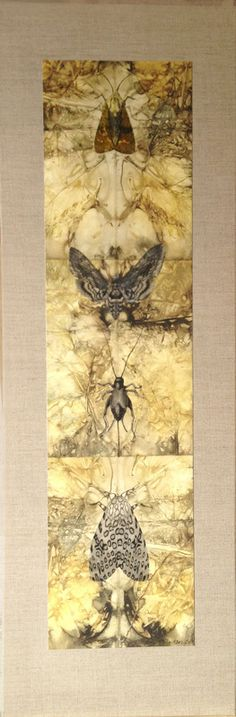 Julies Hackson botanical leaf/dye prints that I scanned and then printed onto Arches 88 paper, mounted on natural linen canvas stretchers, then I added drawn and printed images of insects.