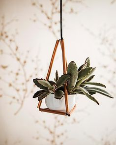 This little hanging plant holder is darling and it makes a great hostess gift! #SweetPaul