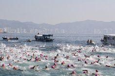 55 Maratón Guadalupano - Acapulco 2013. Si usted es de las personas que gusta de nadar en aguas abiertas aún esta a tiempo de inscribirse para participar de este emocionante evento que se llevará a cabo en la ciudad y puerto de Acapulco, Gro. Los días 7 y 8 de diciembre en este año.