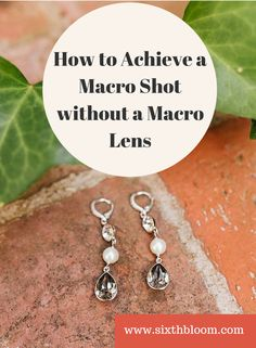 How to Achieve a Macro Shot without a Macro Lens, Macro Photography, Macro Lens, Photography Tips