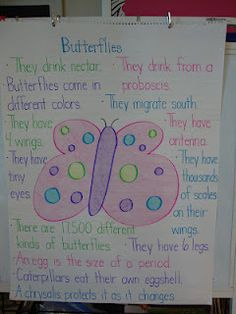 My Butterfly Anchor Chart