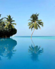 Maldives, Gili Lankanfushi  Photo