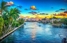 Boca Raton Waterway Lined with Coconut Palm Trees.   Photo courtesy of Kim Seng | CaptainKimo.com