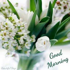 34 good morning quotes to make your day good morning pinterest good morning buen dia bonjour mightylinksfo