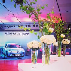 decoration for renault
