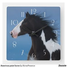 American paint horse square wall clock American Paint Horse, Wall Clocks, Diy Face Mask, Hand Coloring, Dog Design, Party Hats, Funny Cute, Dog Cat, Kids Shop
