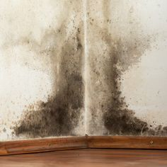 Black Mold Symptoms + 12 Natural Remedies Black mold exposure and black mold poisoning can cause a wide range of health problems. Some black mold symptoms can actually be really serious. Kill Black Mold, Remove Black Mold, Bathroom Mold Remover, Mold In Bathroom, Natural Cleaning Solutions, Natural Cleaning Products, Black Mold In Shower, Shower Mold, Effects Of Black Mold