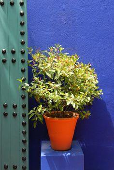 Interior design, decoration, colors,