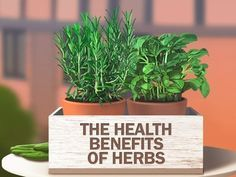 The health benefits of herbs