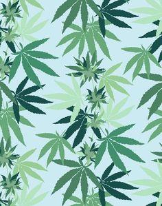 Cannabis by Nathan Turner - Pink Cannabis Wallpaper, Weed Wallpaper, Cute Wallpaper For Phone, Wallpaper Panels, Wallpaper Roll, Cool Wallpaper, Wallpaper Backgrounds, Wallpaper Paste, Iphone Wallpaper