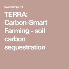 TERRA: Carbon-Smart Farming - soil carbon sequestration
