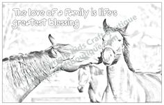 7 unique 11 x 17 inch posters in each pack, created from original animal photographs and ready for your child to color. Poster Colour, Animal Posters, My Family, Motivational Quotes, Horses, My Love, Life, Animals, Photographs