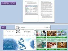 Concepto de Wiki. Explicación sencilla.   E-Learning-Inclusivo (Mashup)   Scoop.it