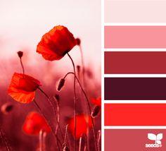 Rojos. Paleta de colores