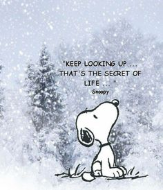 Keep looking up . . . that's the secret of life.