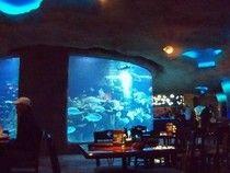 1000 Images About Aquarium Restaurant In Kemah Tx On