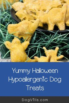 You already have your pup on the best hypoallergenic dog food, but finding great hypoallergenic dog treats can seem a little daunting at times. Best Dog Food, Best Dogs, Hypoallergenic Dog Treats, Halloween Cookie Cutters, Dog Food Recipes, Your Dog, Pup, Times, Dog Recipes