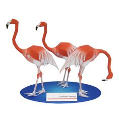 Caribbean flamingo - Other Animals - Animals - Paper Craft - Canon CREATIVE PARK