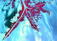 Marea blanca La explosión de la plataforma petrolífera 'Deepwater Horizon' en abril de 2010 provocó una marea negra en el golfo de México...