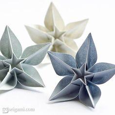 Carambola Flowers, Origami