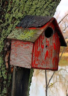Bird House Greeting Card for Sale by Sophie Vigneault Make A Bird Feeder, Bird House Feeder, Birdhouse Designs, Tweet Tweet, Red Cottage, Kinds Of Birds, Small Buildings, Bird Cages, Bird Watching