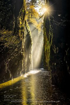 Canyonburst - Pinned by Mak Khalaf One more from the Oneonta Gorge Oregon. Notice the arrow head pointing towards the sun. That was accidental but welcomed addition. To tell you the true I noticed it for the first time when I processed the image... Landscapes canyonfoggorgegreg boratynoneontaoregonreflectionriversunsunburst by GreggB