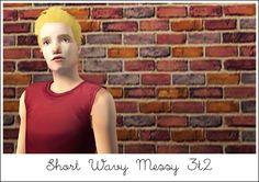 Sims2SC 2013-01-12 16-46-20-30