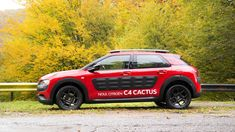 CITROEN C4 Cactus Review http://www.autoevolution.com/reviews/citroen-c4-cactus-review-2014.html