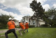 Robson Lacerda, co-owner of Tarzan Tree Service, (using the saw), and his crew remove a tree close to a customer's home in Virginia Beach on July 22, 2015.  <span class='credit'>(L. Todd Spencer  | The Virginian-Pilot)</span>