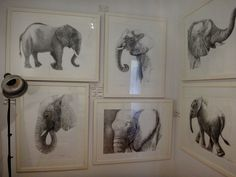 Elephant artworks available for purchase - come in and say hello! 517 Military Road, Mosman.