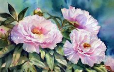 Ann Mortimer: All Time Popular Art, Design & Photography China Painting, Watercolour Painting, Watercolor Flowers, Painting & Drawing, Blue Peonies, Popular Art, Arte Floral, Botanical Illustration, Watercolor Paintings