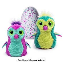 Hatchimals Pengualas Pink/Teal Egg  One of Two Magical Creatures Inside