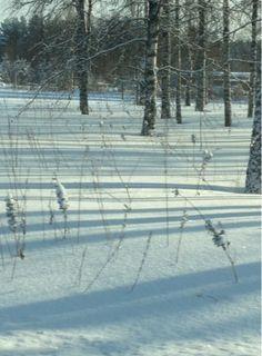 Arkimamman Arkiralli: Ketterästi keskiviikkona Snow, Outdoor, Outdoors, Outdoor Games, The Great Outdoors, Eyes, Let It Snow