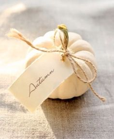 Darling as place cards for Thanksgiving. Tiny white pumpkins with name cards tied on with twine or ribbon.